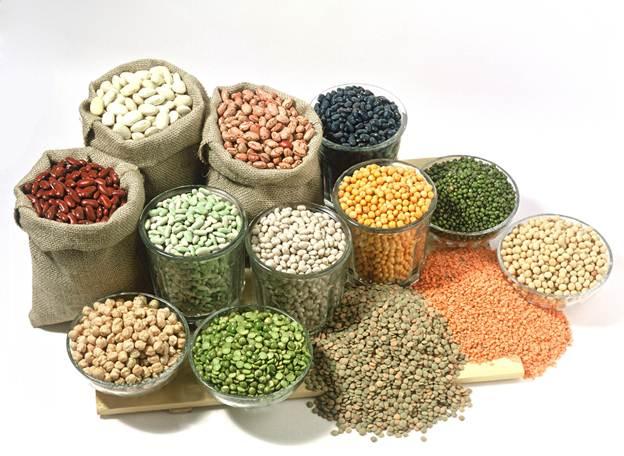 beans fibre