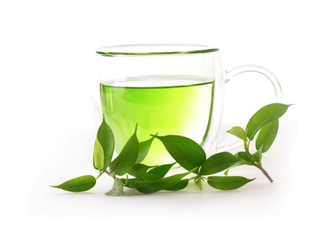 green-tea-plant